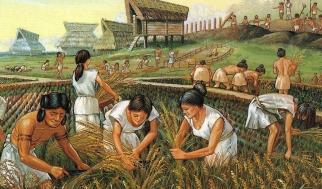 agriculture-mesopotamia